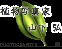 奄美の植物写真家 山下 弘